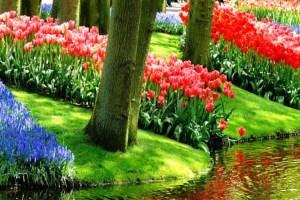 Красивейшие цветочные сады Европы