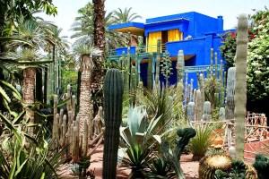 Сад Мажорель в Марракеш, Марокко