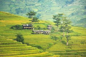 Отдых в Малайзии: несколько лучших достопримечательностей