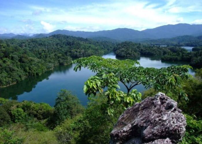 Национальный парк Таман-Негара
