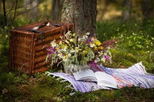 Организуем пикник за городом: на что обратить внимание
