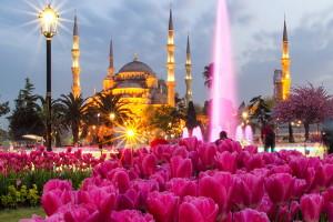 Фестиваль тюльпанов в Стамбуле в 2020 году привлекает русских туристов